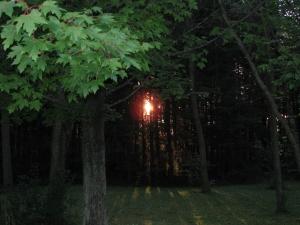 Home Aug 11 2012 028
