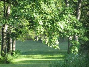 Home Aug 3 2012 006