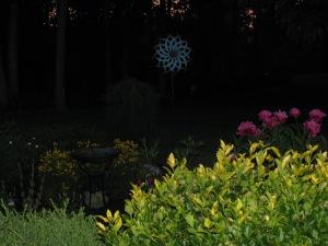 nature-at-dusk-2-065
